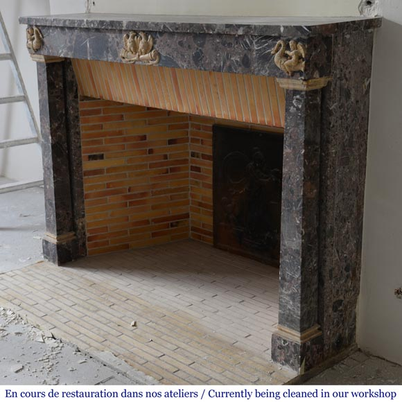 Antique Empire style mantel in Breche de Waulsort and alabaster decors-5